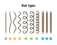 hair types for curly hair